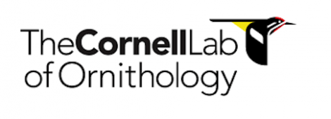 The Cornell Lab logo